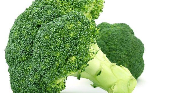 Le brocoli et son action sur notre organisme