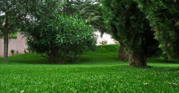 Pourquoi opter pour la pelouse synthétique ?